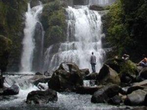 Monte Verde Guide Tour