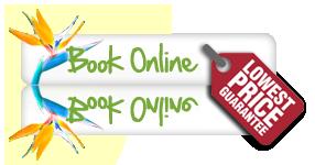 Book Tour Now