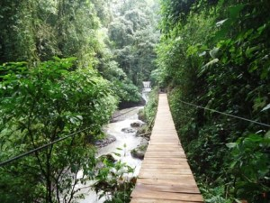 RAINMAKER BRIDGES COSTA RICA