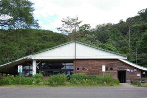 Carara Biological ReserveTours Costa Rica